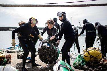 Japan's 'ama' grannies cling <br /> to their free-diving