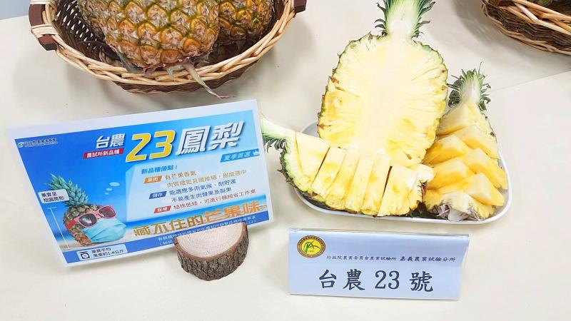 Institute unveils pineapple that smells like a mango